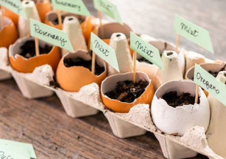 Jardin aromatique de Pâques