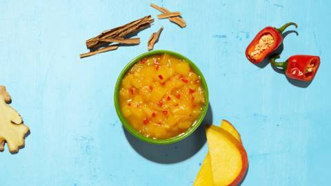 Chutney de mangue Udaipur